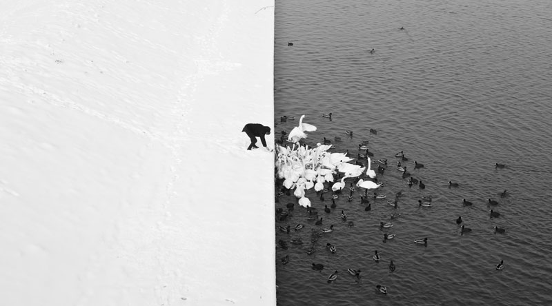 Winter contrast in krakow poland black and white